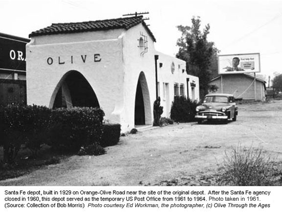 Olive Through The Ages History 1900 1955